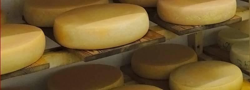 Haibenhof - Eigene Produktion